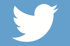 https://secure.emochila.com/swserve/siteAssets/site10109/images/alltwitter-twitter-bird-logo-white-on-blue_238x160.png