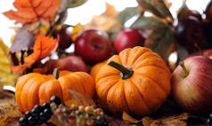 https://secure.emochila.com/swserve/siteAssets/site8969/images/pumpkin-apple-fall-harvest_238x160.jpg